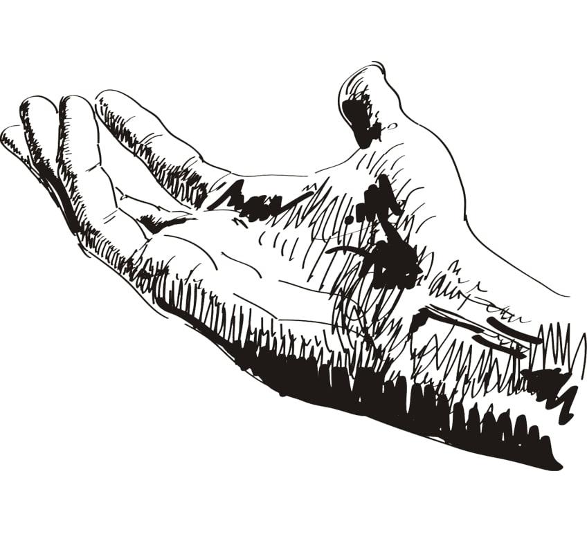 Рука по суставам характер перемещения суставных головок при жевательном движении